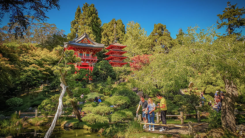 Japonská zahrada v Golden Gate parku